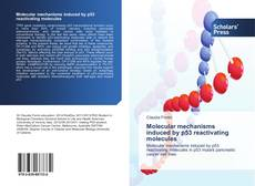 Bookcover of Molecular mechanisms induced by p53 reactivating molecules