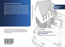 Bookcover of Labour Productivity Improvement