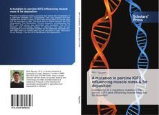 A mutation in porcine IGF2 influencing muscle mass & fat deposition的封面