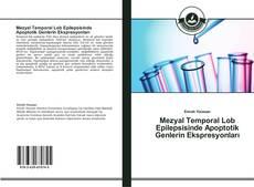 Buchcover von Mezyal Temporal Lob Epilepsisinde Apoptotik Genlerin Ekspresyonları