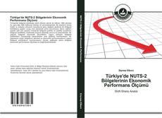 Türkiye'de NUTS-2 Bölgelerinin Ekonomik Performans Ölçümü kitap kapağı