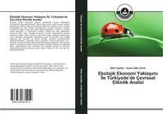 Copertina di Ekolojik Ekonomi Yaklaşımı İle Türkiyede'de Çevresel Etkinlik Analizi