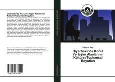 Couverture de Diyarbakır'da Konut Yerleşim Alanlarının Kültürel/Toplumsal Boyutları