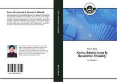 Bookcover of Kamu Sektöründe İç Denetimin Etkinliği