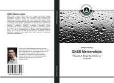 Bookcover of GNSS Meteorolojisi