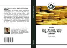 İslâm - Osmanlı Hukuk Uygulamasında Para Vakıfları的封面