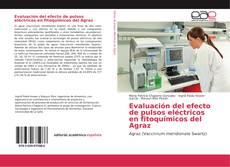 Обложка Evaluación del efecto de pulsos eléctricos en fitoquímicos del Agraz