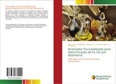 Borítókép a  Analisador fluxo-batelada para determinação de Fe (III) por fotometria - hoz