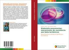 Bookcover of Klebsiella pneumoniae: mecanismos de resistência aos beta-lactâmicos