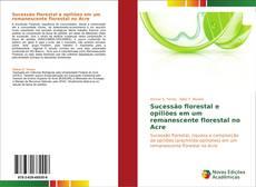 Bookcover of Sucessão florestal e opiliões em um remanescente florestal no Acre