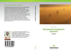 Bookcover of Экономика мирового кризиса