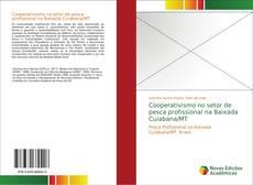 Cooperativismo no setor de pesca profissional na Baixada Cuiabana/MT的封面