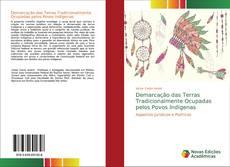 Capa do livro de Demarcação das Terras Tradicionalmente Ocupadas pelos Povos Indígenas