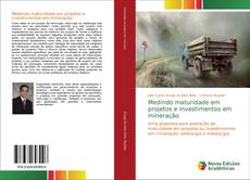 Capa do livro de Medindo maturidade em projetos e investimentos em mineração