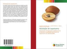Buchcover von Adubação de sapotizeiro