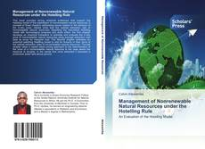Bookcover of Management of Nonrenewable Natural Resources under the Hotelling Rule