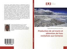 Bookcover of Production de sel marin et obtention de l'eau revitalisée aux Comores