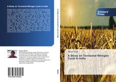 Bookcover of A Study on Terrestrial Nitrogen Cycle in India