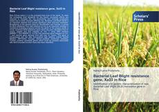 Bookcover of Bacterial Leaf Blight resistance gene, Xa33 in Rice