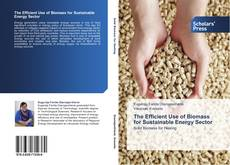 Copertina di The Efficient Use of Biomass for Sustainable Energy Sector