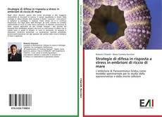 Copertina di Strategie di difesa in risposta a stress in embrioni di riccio di mare