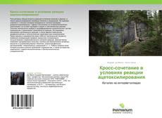 Bookcover of Кросс-сочетание в условиях реакции ацетоксилирования