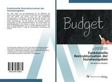 Bookcover of Funktionelle Restrukturisation der Sozialausgaben