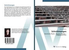 Capa do livro de Schnittmengen