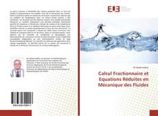 Calcul Fractionnaire et Equations Réduites en Mécanique des Fluides kitap kapağı