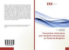 Portada del libro de Convection mixte dans une conduite traversée par un fluide de Bingham