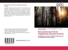 Portada del libro de Secuestro de C-N en vegetación de pino-encino