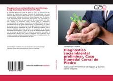 Borítókép a  Diagnostico sociambiental preliminar, Caso Humedal Corral de Piedra - hoz