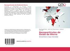 Portada del libro de Nanopartículas de Óxido de Hierro