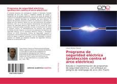 Programa de seguridad eléctrica (protección contra el arco eléctrico) kitap kapağı
