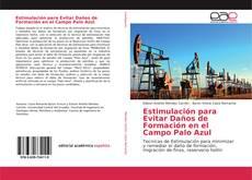 Обложка Estimulación para Evitar Daños de Formación en el Campo Palo Azul