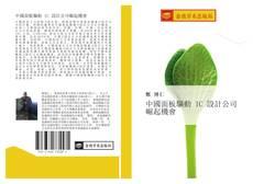 Copertina di 中國面板驅動 IC 設計公司崛起機會