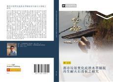 都市垃圾焚化底渣水萃細泥再生耐火石膏板之研究 kitap kapağı