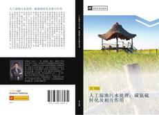 Bookcover of 人工湿地污水处理:碳氮硫转化及相互作用