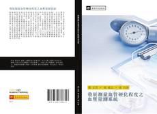 Bookcover of 發展測量血管硬化程度之血壓量測系統