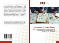 Bookcover of Mangagement des risques