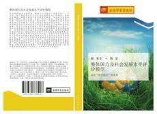 Capa do livro de 整体国力及社会发展水平评价模型