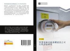 Обложка 智慧電錶系統基礎建設之可行性評估研究