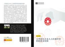 Capa do livro de 大型国有企业人力资源管控机制建设初探