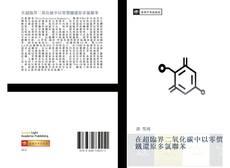 Portada del libro de 在超臨界二氧化碳中以零價鐵還原多氯聯苯