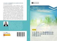 介孔基质子交换膜燃料电池电极催化剂的制备及其电化学性能研究 kitap kapağı