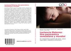 Обложка Lactancia Materna: Una panorámica venezolana y mundial