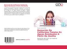 Remoción De Coliformes Totales En Aguas Residuales A Partir De Zeolita的封面