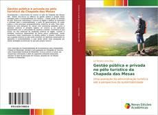 Bookcover of Gestão pública e privada no pólo turístico da Chapada das Mesas
