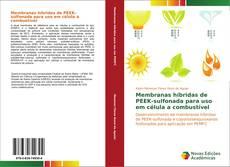 Copertina di Membranas híbridas de PEEK-sulfonada para uso em célula a combustível