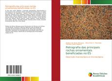 Capa do livro de Petrografia das principais rochas ornamentais beneficiadas no ES